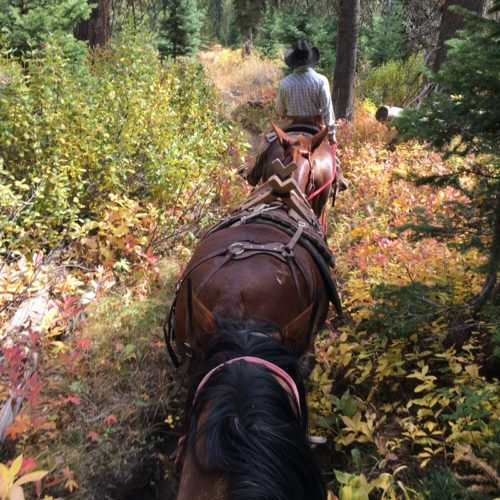 Teton Wilderness Progressive Pack Trip